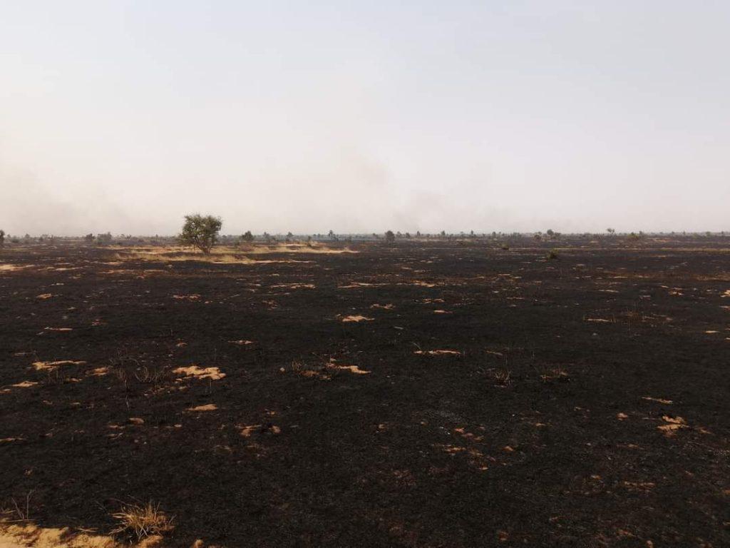 Niger – Maradi : plusieurs personnes touchées par un feu de brousse à Bermo